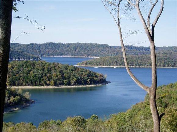 0 Davidson Property Photo - Smithville, TN real estate listing