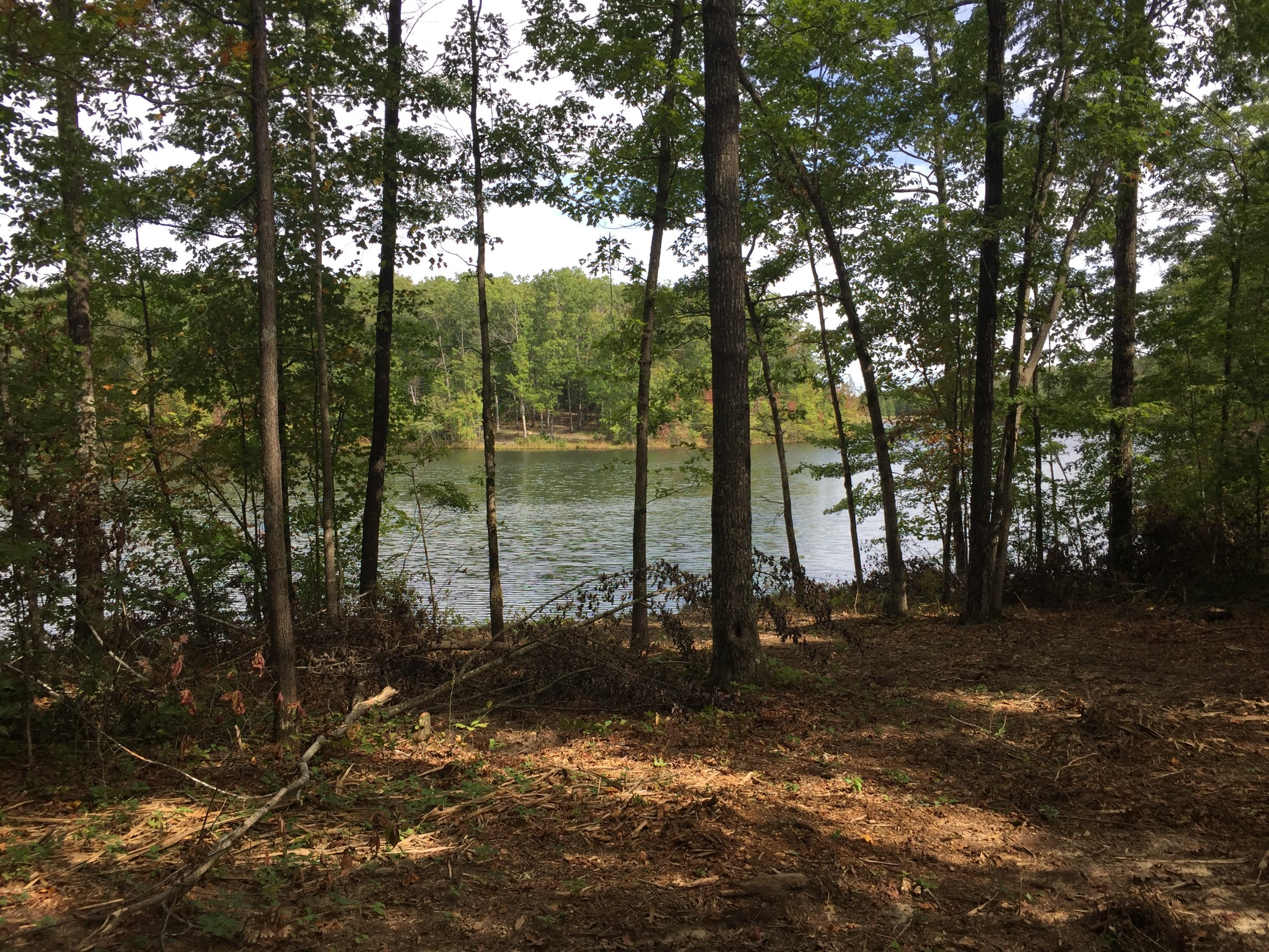 177 Lake Louisa Loop Property Photo - Sewanee, TN real estate listing