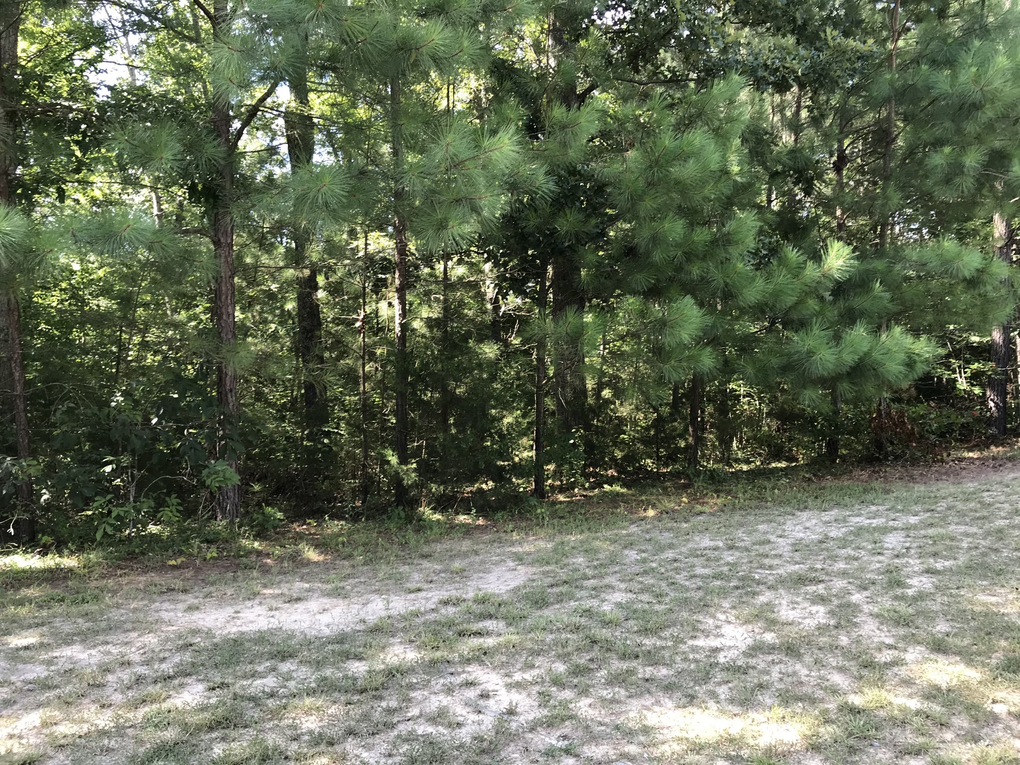 116 Deer Trl Property Photo - Cumberland City, TN real estate listing