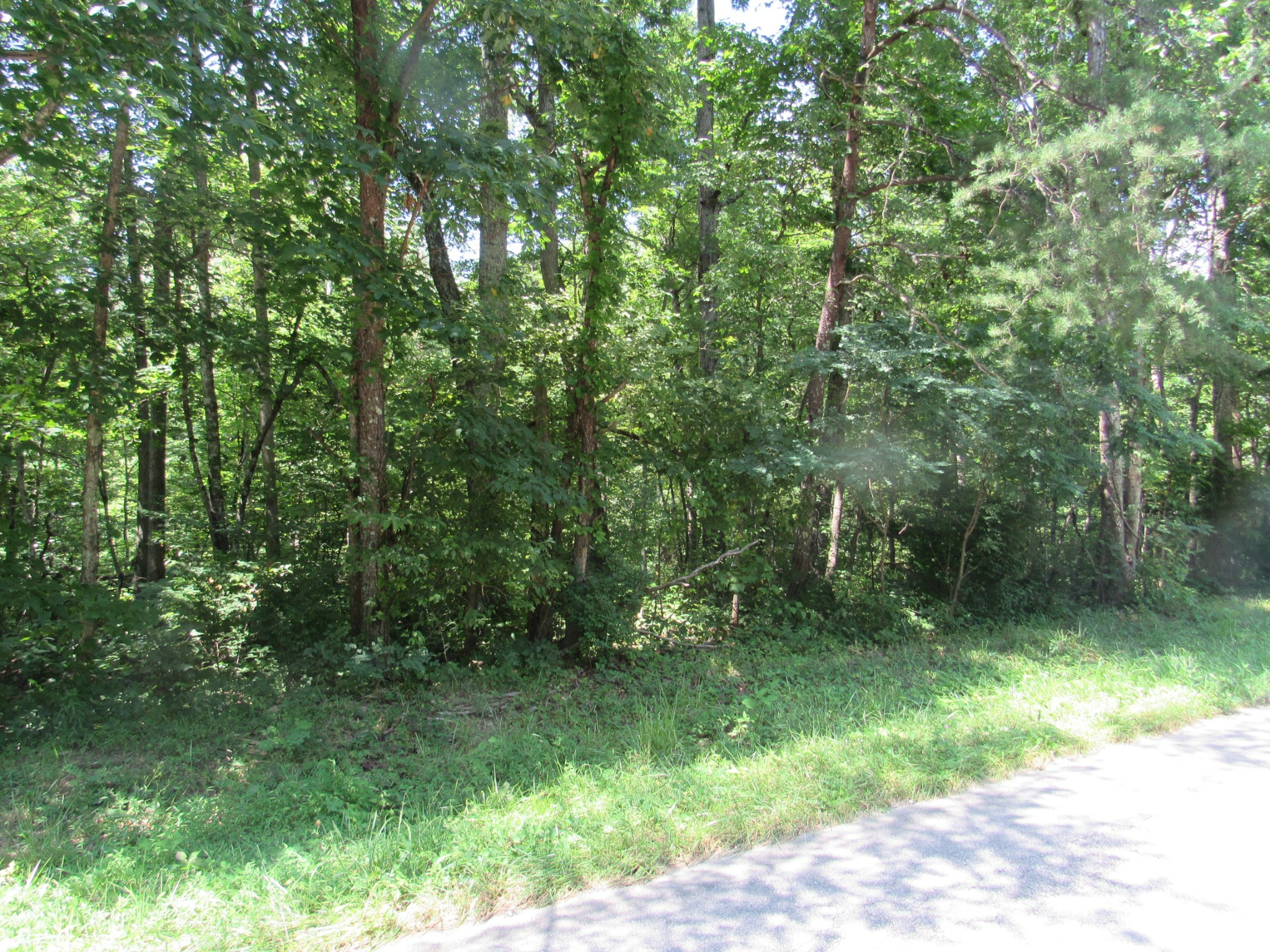 0 Callahan Road Property Photo - Monterey, TN real estate listing