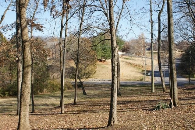1721 Rural Hill Property Photo