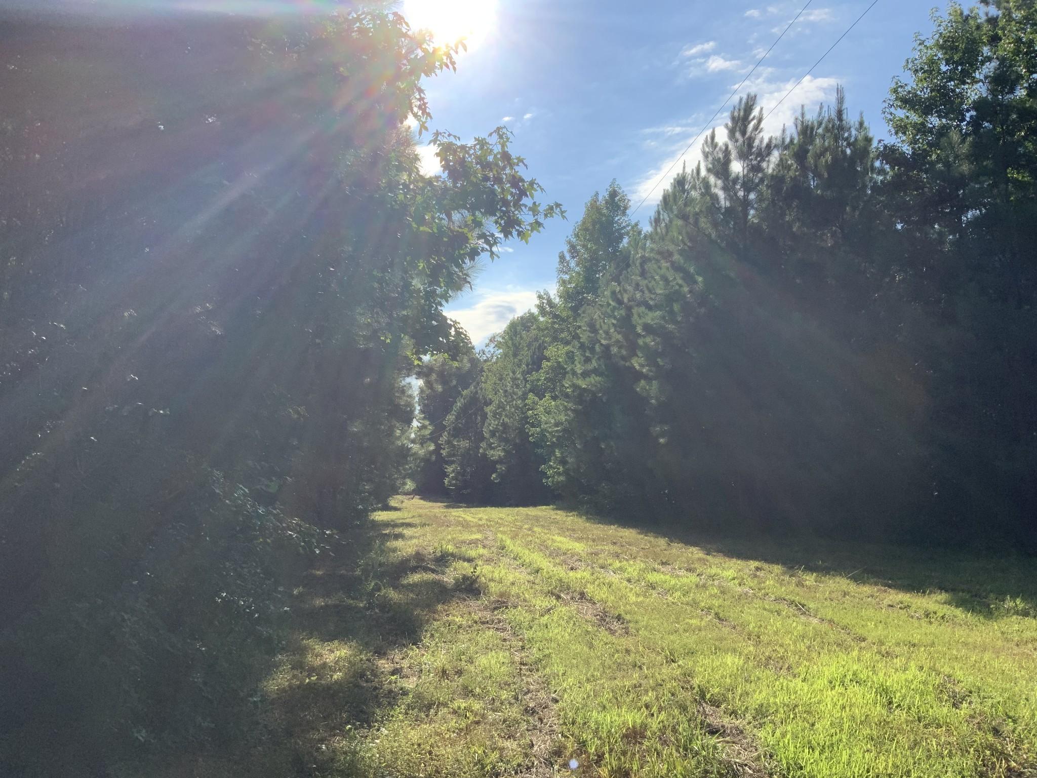 0 Allen Mill Bridge Road Property Photo - Holladay, TN real estate listing
