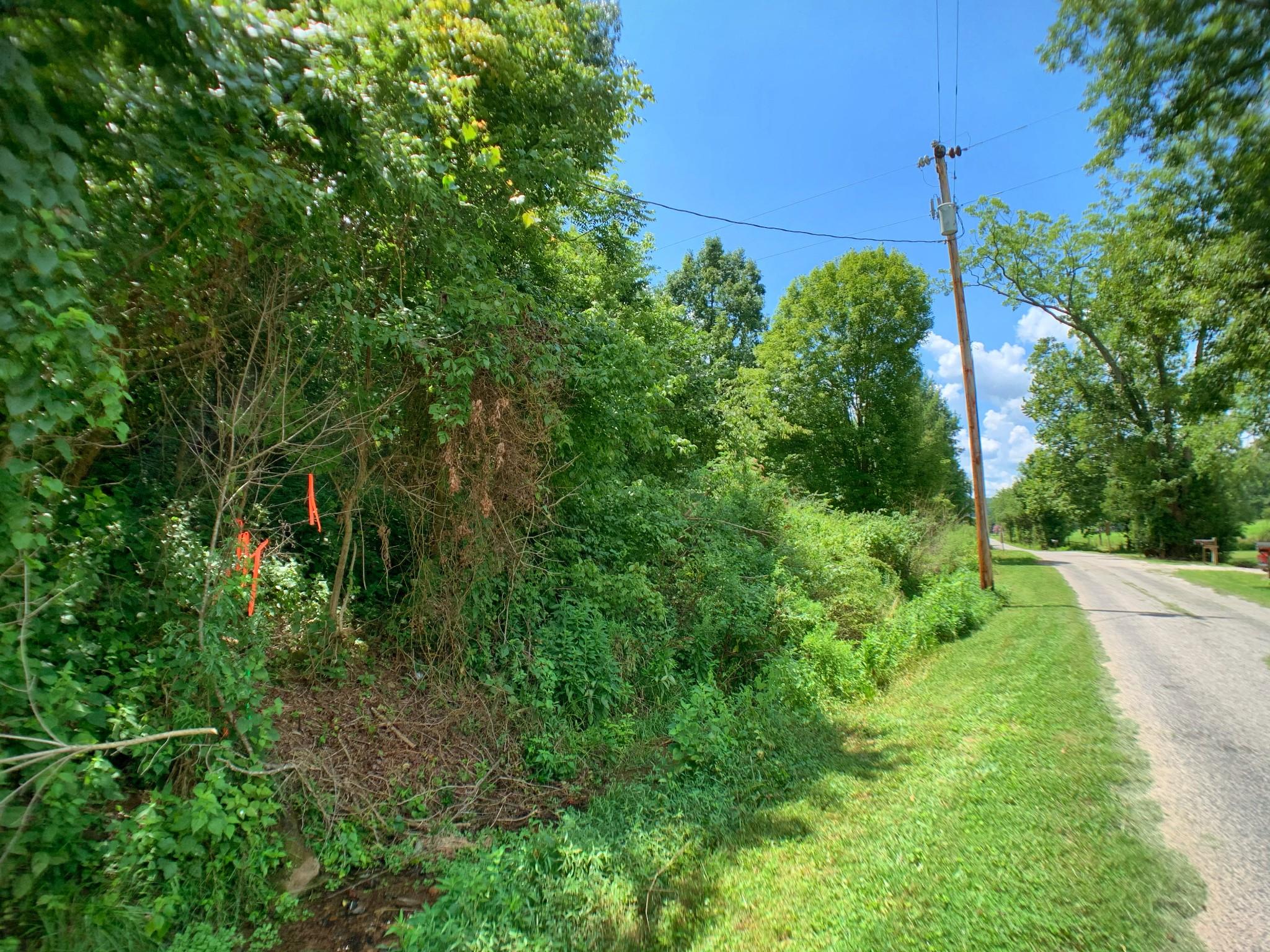 0 Ella West Circle Property Photo - Lynnville, TN real estate listing