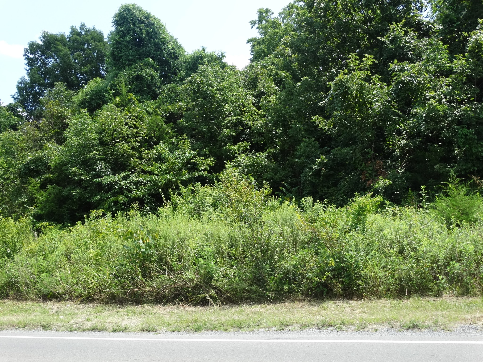 13345 Old Hickory Blvd Property Photo - Antioch, TN real estate listing