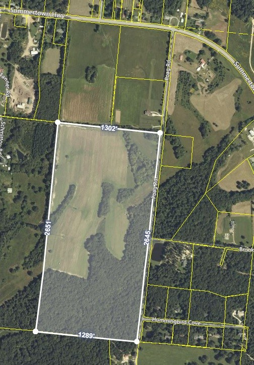 0 Summertown Hwy/Poag Rd Property Photo - Hohenwald, TN real estate listing