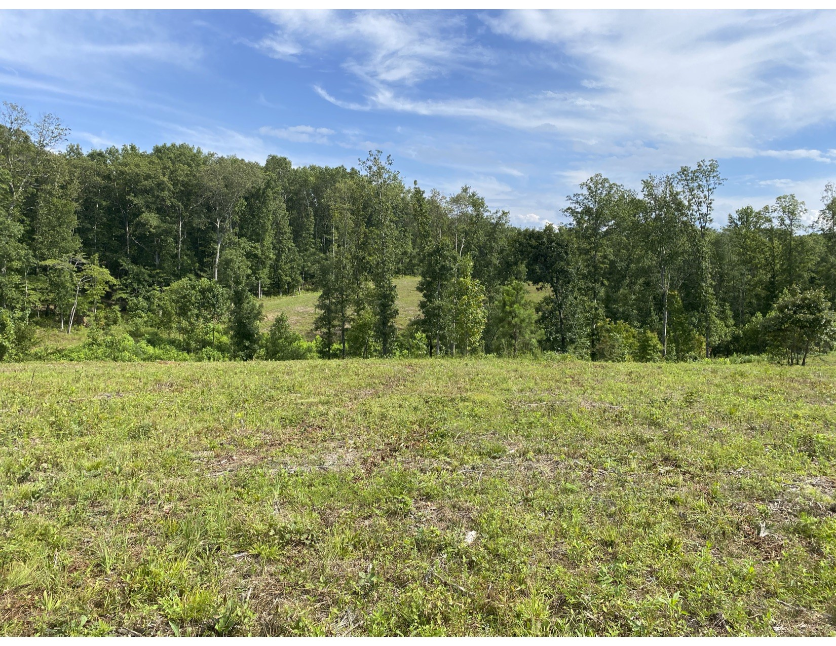 0 Vaughn Lane Track 1 Property Photo - Lyles, TN real estate listing