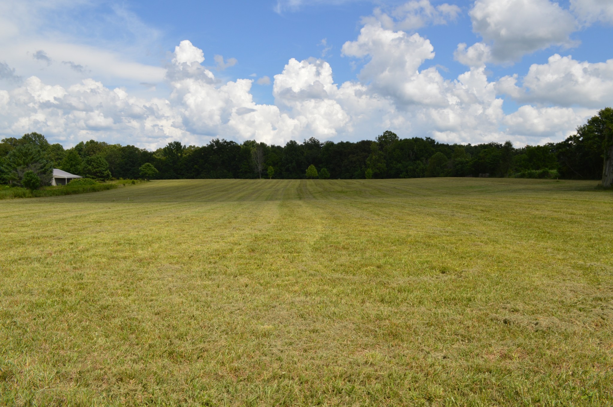 670 N Palmers Chapel Rd Property Photo - White House, TN real estate listing