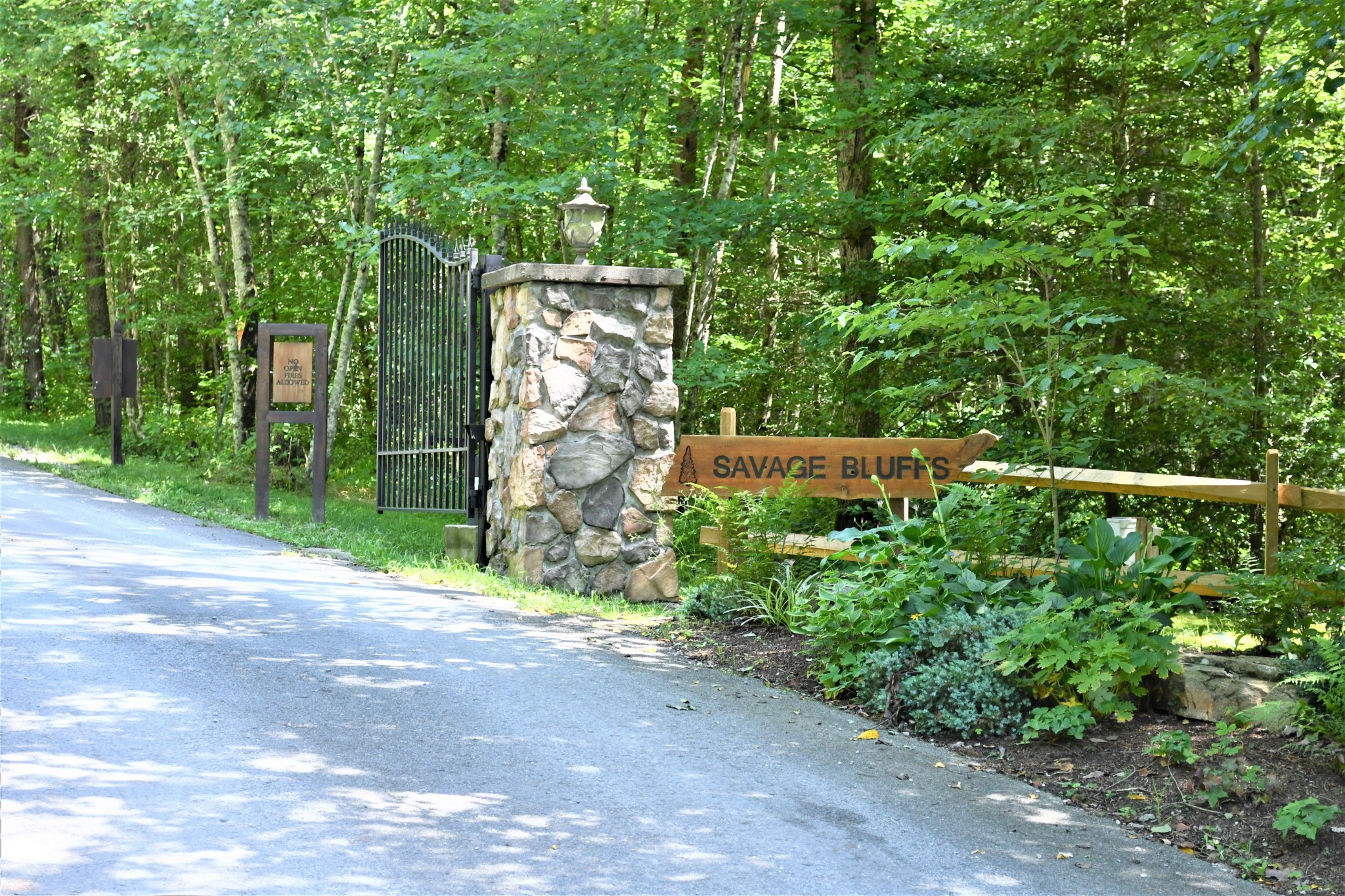 0 Wilderness Bridge Property Photo - Coalmont, TN real estate listing