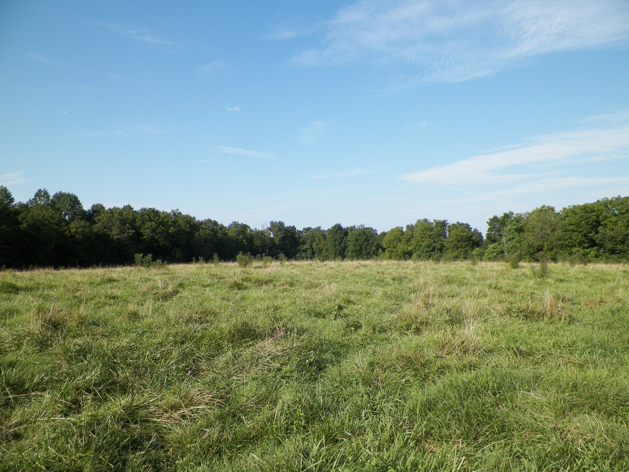 1761 Shiloh Rd Property Photo - Lafayette, TN real estate listing