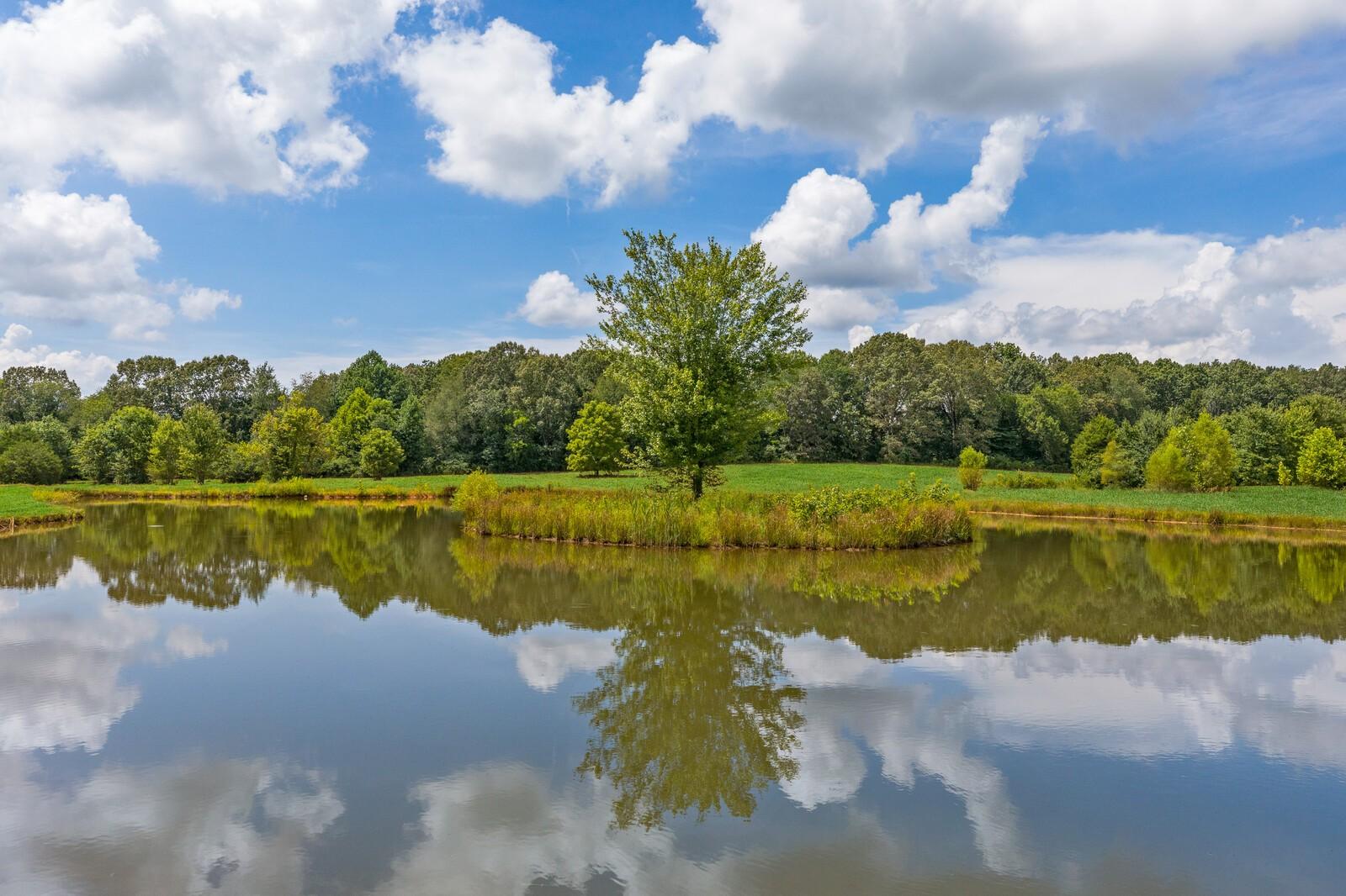 11242 Challenge Dr Property Photo - Bon Aqua, TN real estate listing