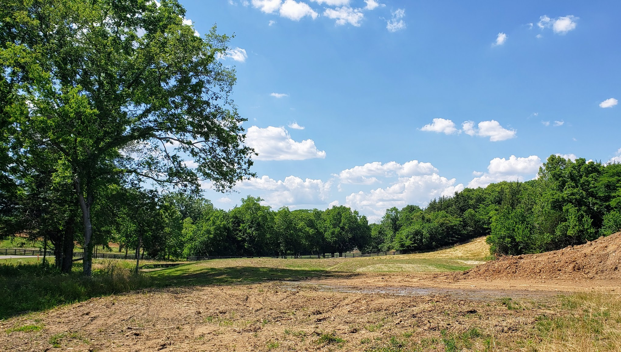 8804 Saddlebay Dr. (Lot #11037) Property Photo - College Grove, TN real estate listing