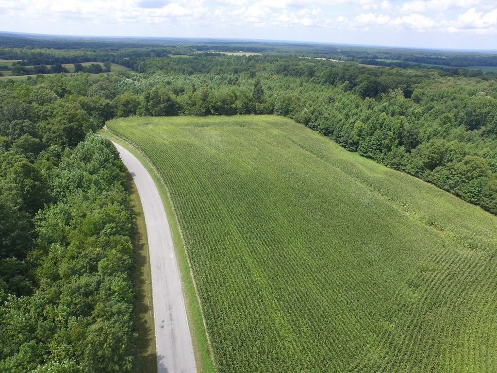 5 Brewer Rd. (Tract 5) Property Photo - Camden, TN real estate listing