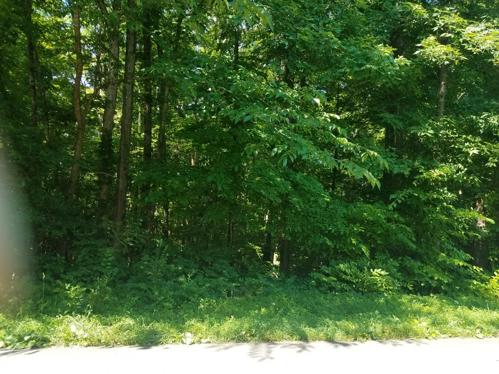 10615 Highway 7 Property Photo - Primm Springs, TN real estate listing