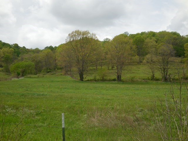 0 Dean Hl Rd Property Photo - Pleasant Shade, TN real estate listing