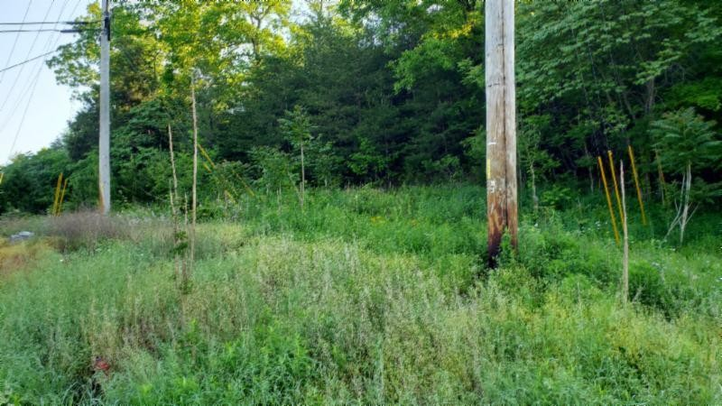 9 .77ac Monterey Hwy Property Photo - Rickman, TN real estate listing