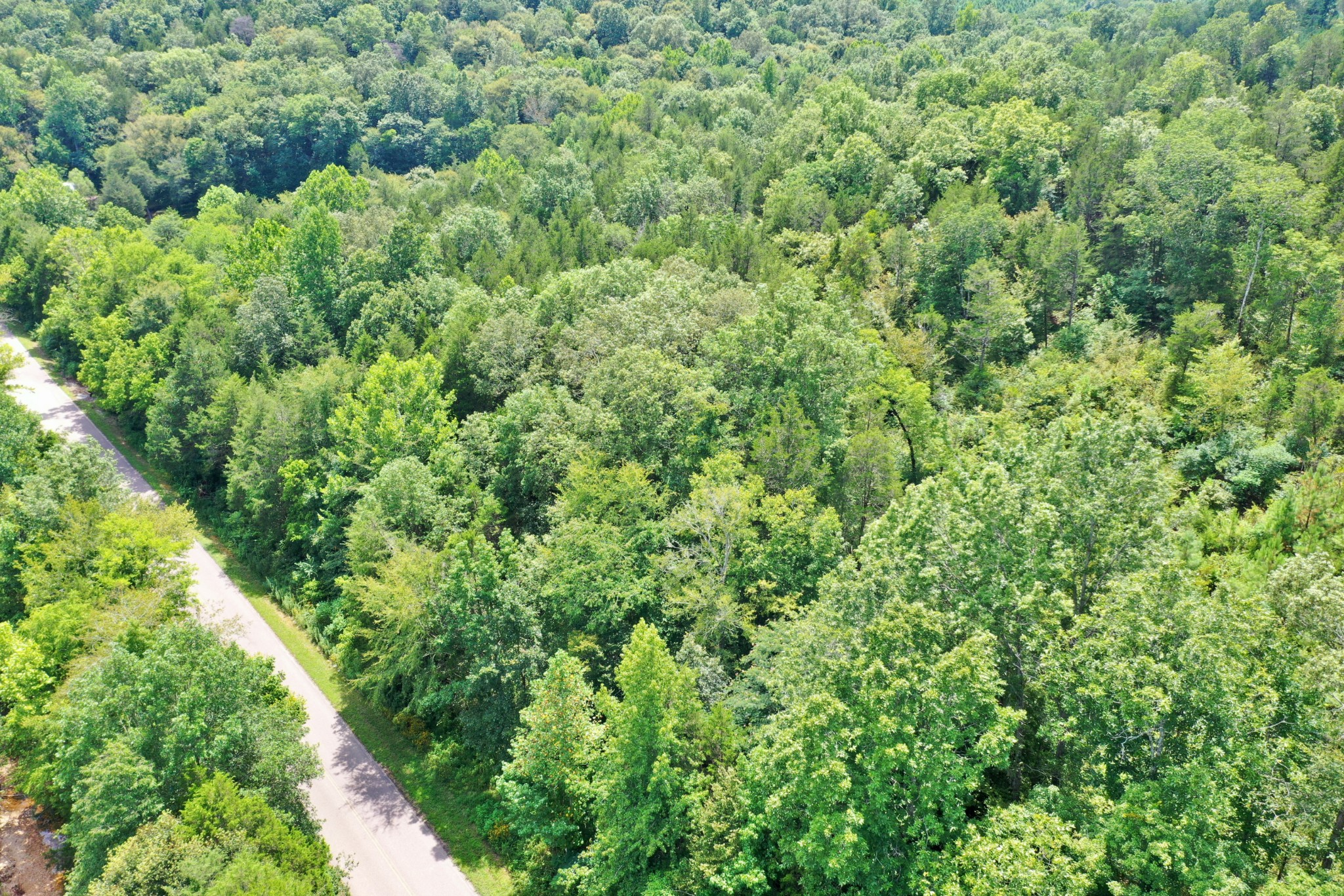 0 Mayberry Prong Rd Property Photo - Linden, TN real estate listing