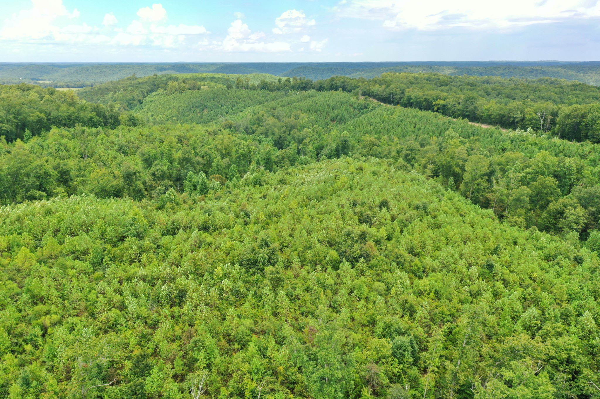 0 Highway 128 Property Photo - Linden, TN real estate listing