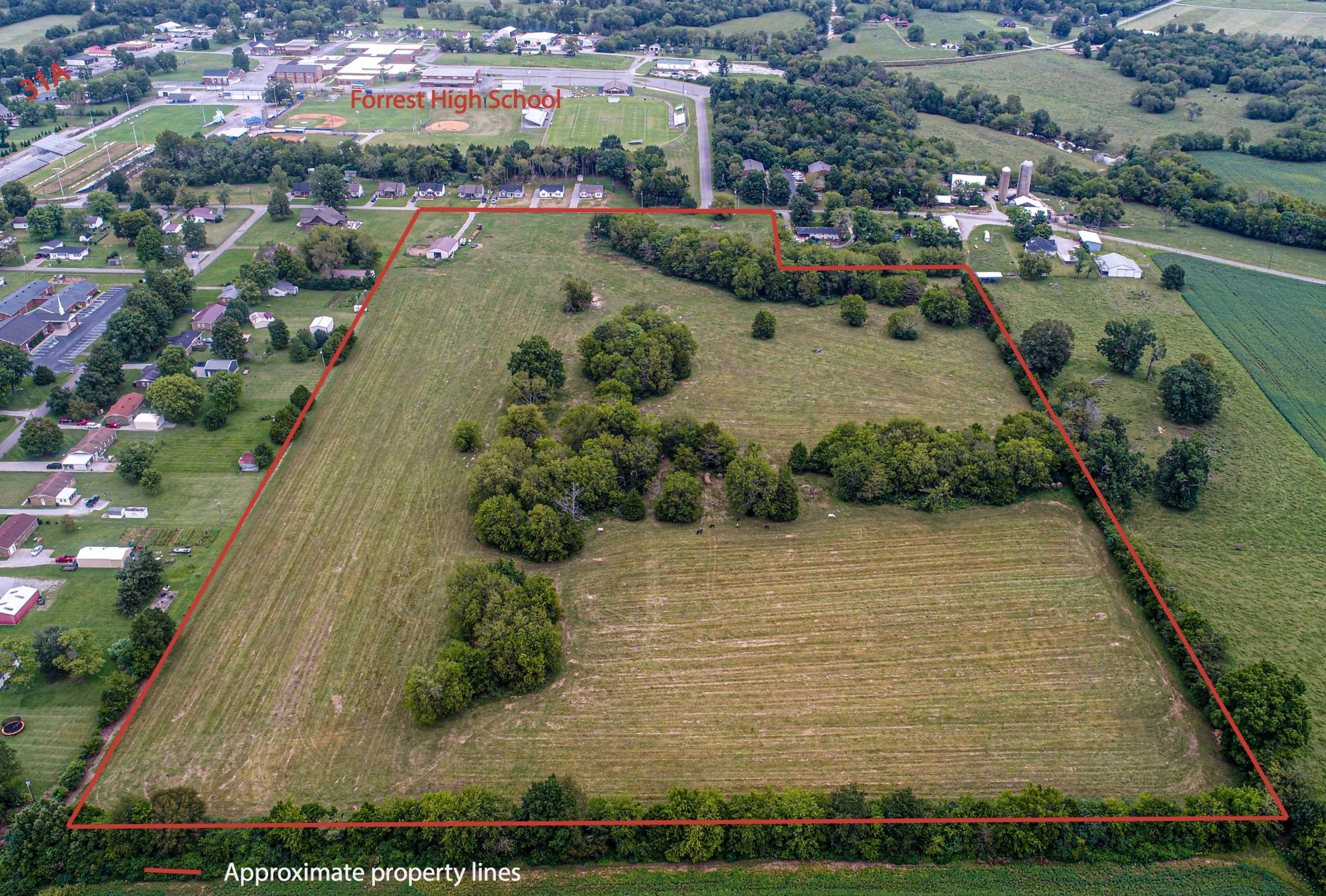 0 Spring Crk St Property Photo - Chapel Hill, TN real estate listing