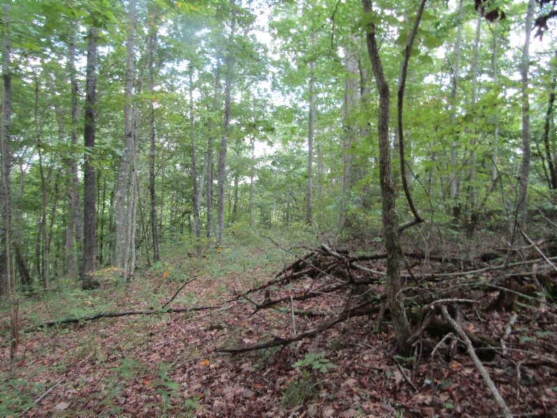 5 .017ac Backwoods Trl Property Photo - Celina, TN real estate listing