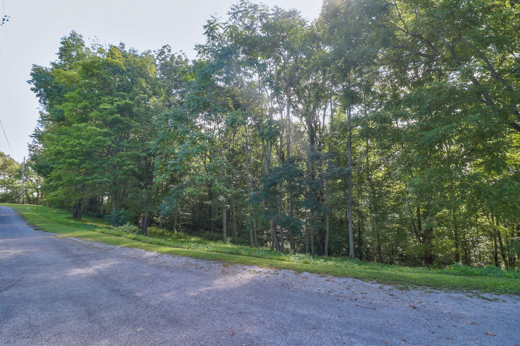 0 Lafever Rdg Rd Property Photo - Silver Point, TN real estate listing