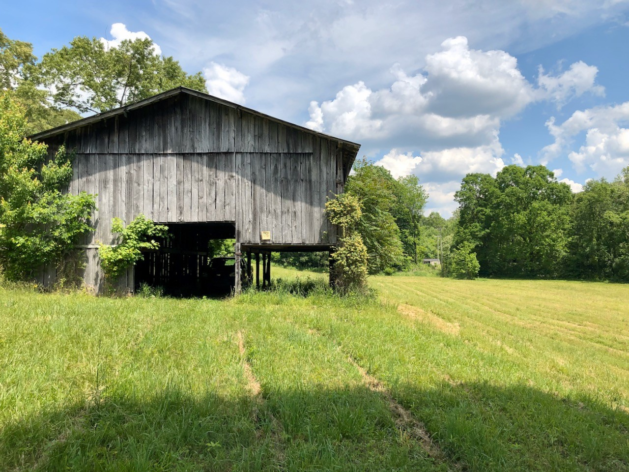 151 Wilder Lane Property Photo - Red Boiling Springs, TN real estate listing