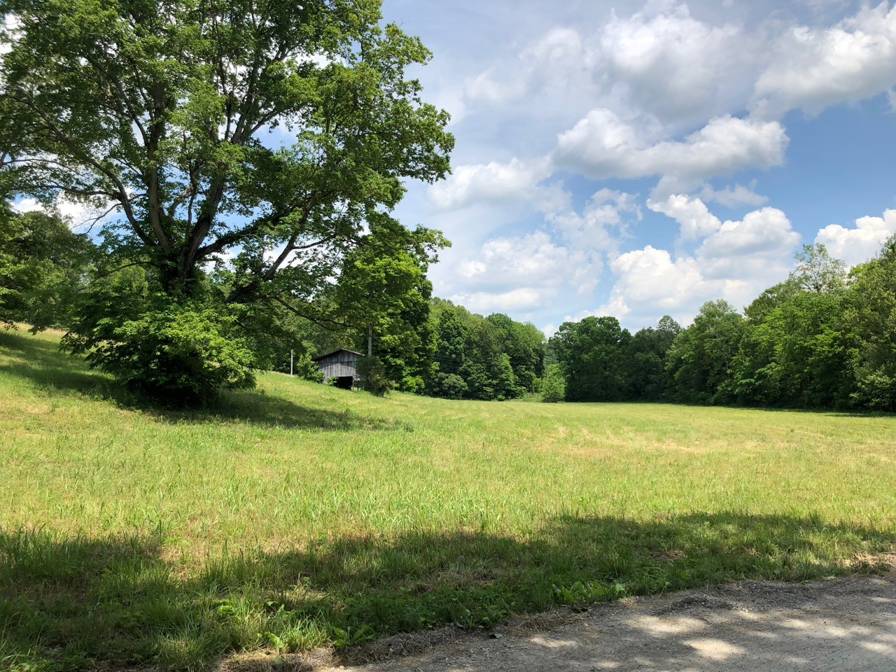 505 Whitley Hollow Rd Property Photo - Red Boiling Springs, TN real estate listing