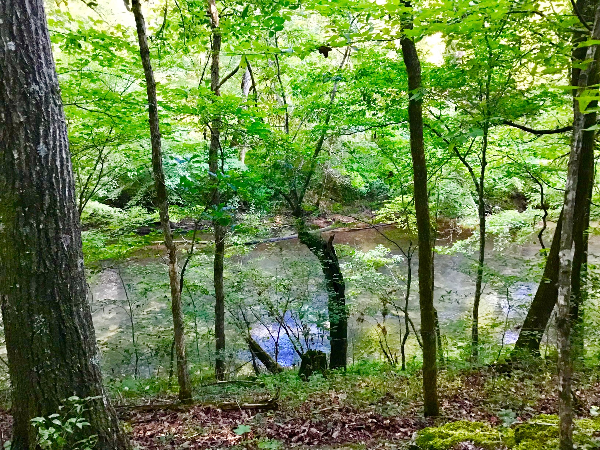 0 Wheeler Rd Property Photo - Mc Minnville, TN real estate listing