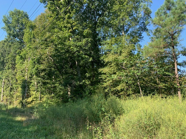 0 Hwy 70 Property Photo - Kingston Springs, TN real estate listing