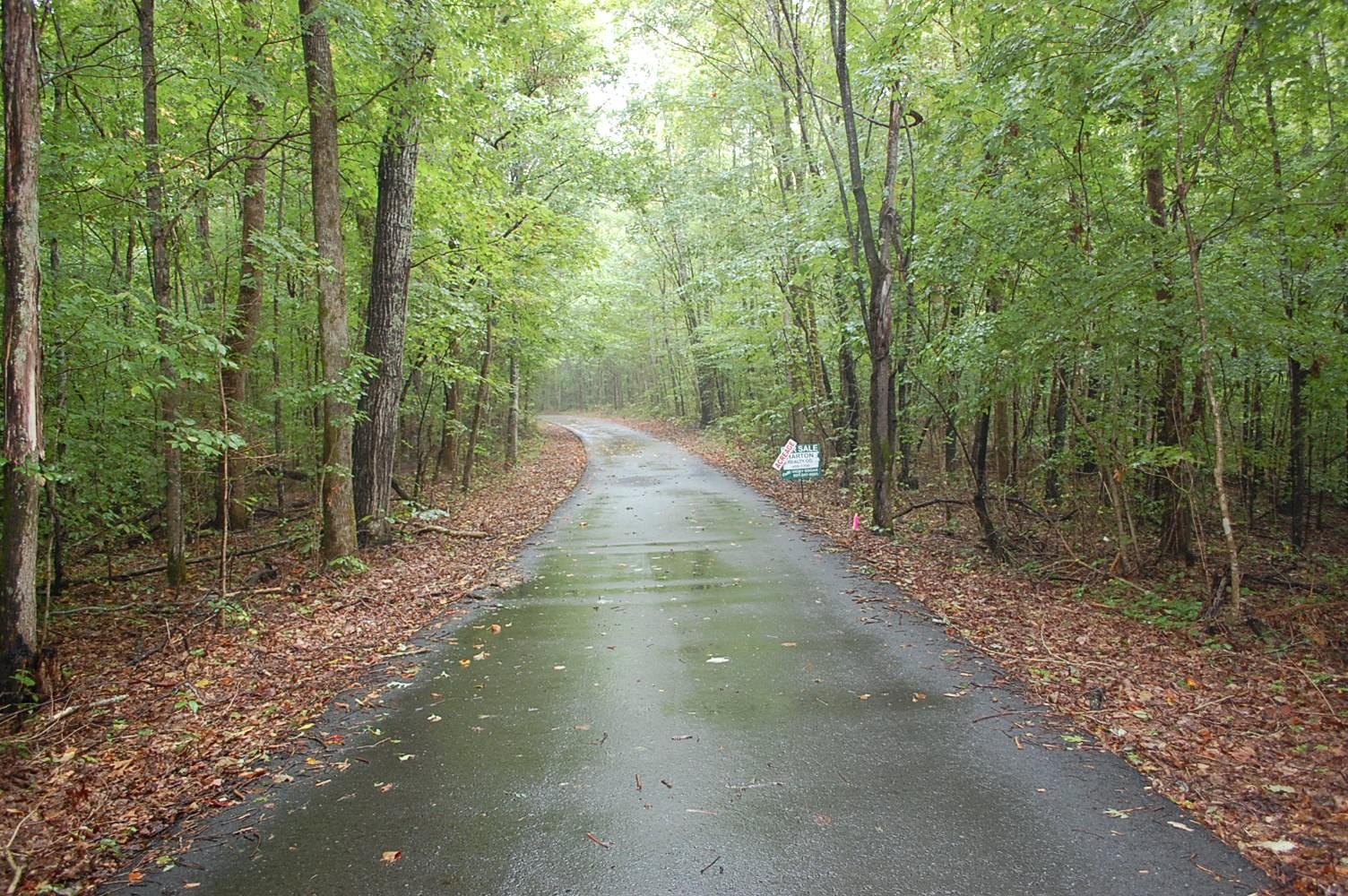 0 Reynolds Hollow Rd Property Photo - Lynchburg, TN real estate listing