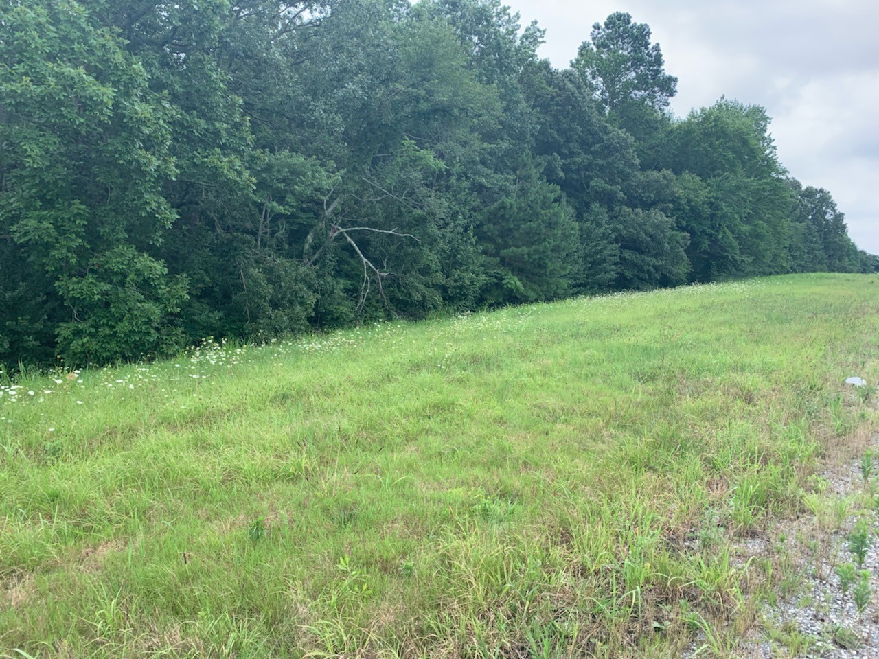 2694 Winchester Hwy Property Photo - Flintville, TN real estate listing