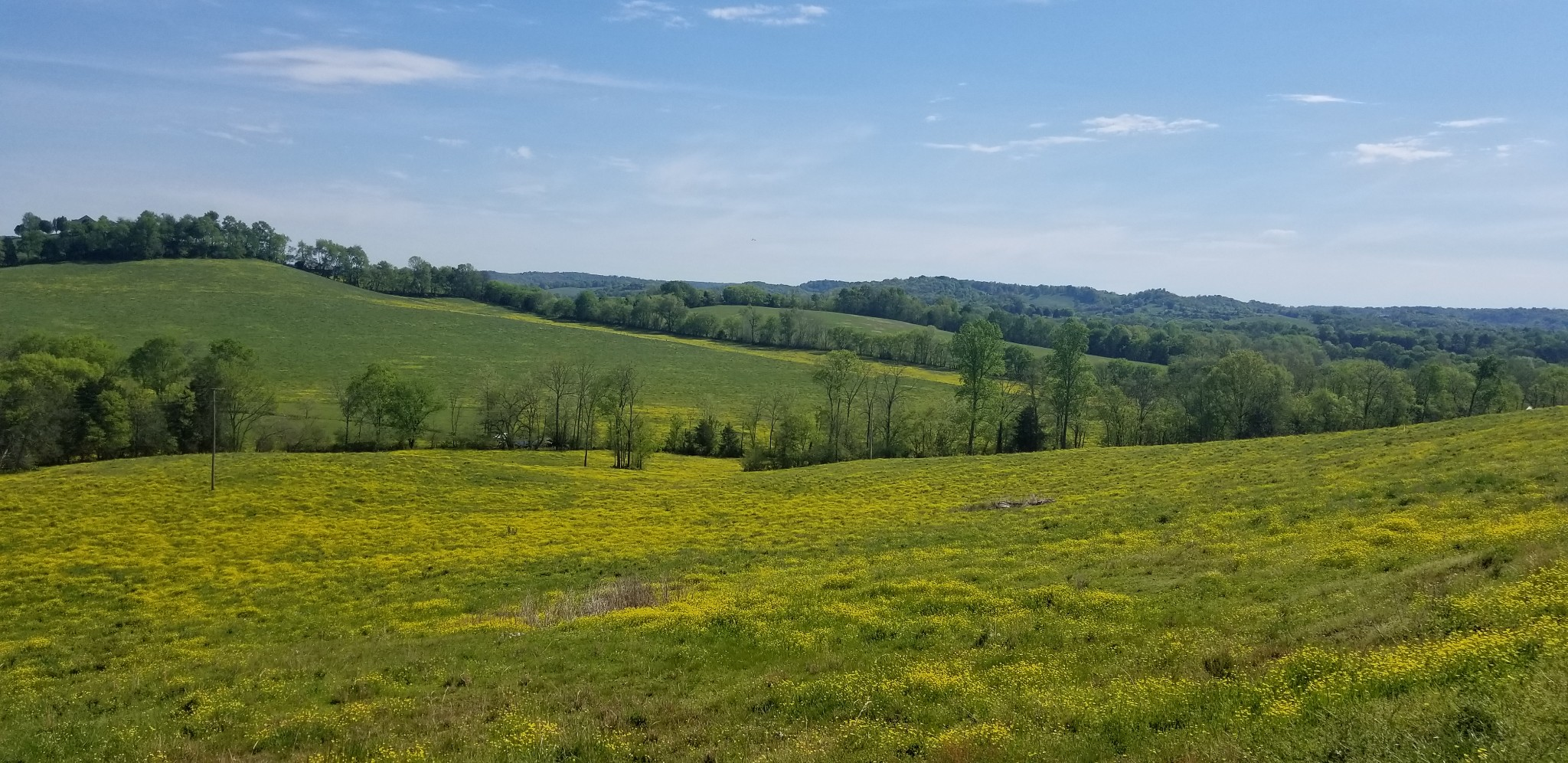 9 Hwy 64 Property Photo - Beechgrove, TN real estate listing
