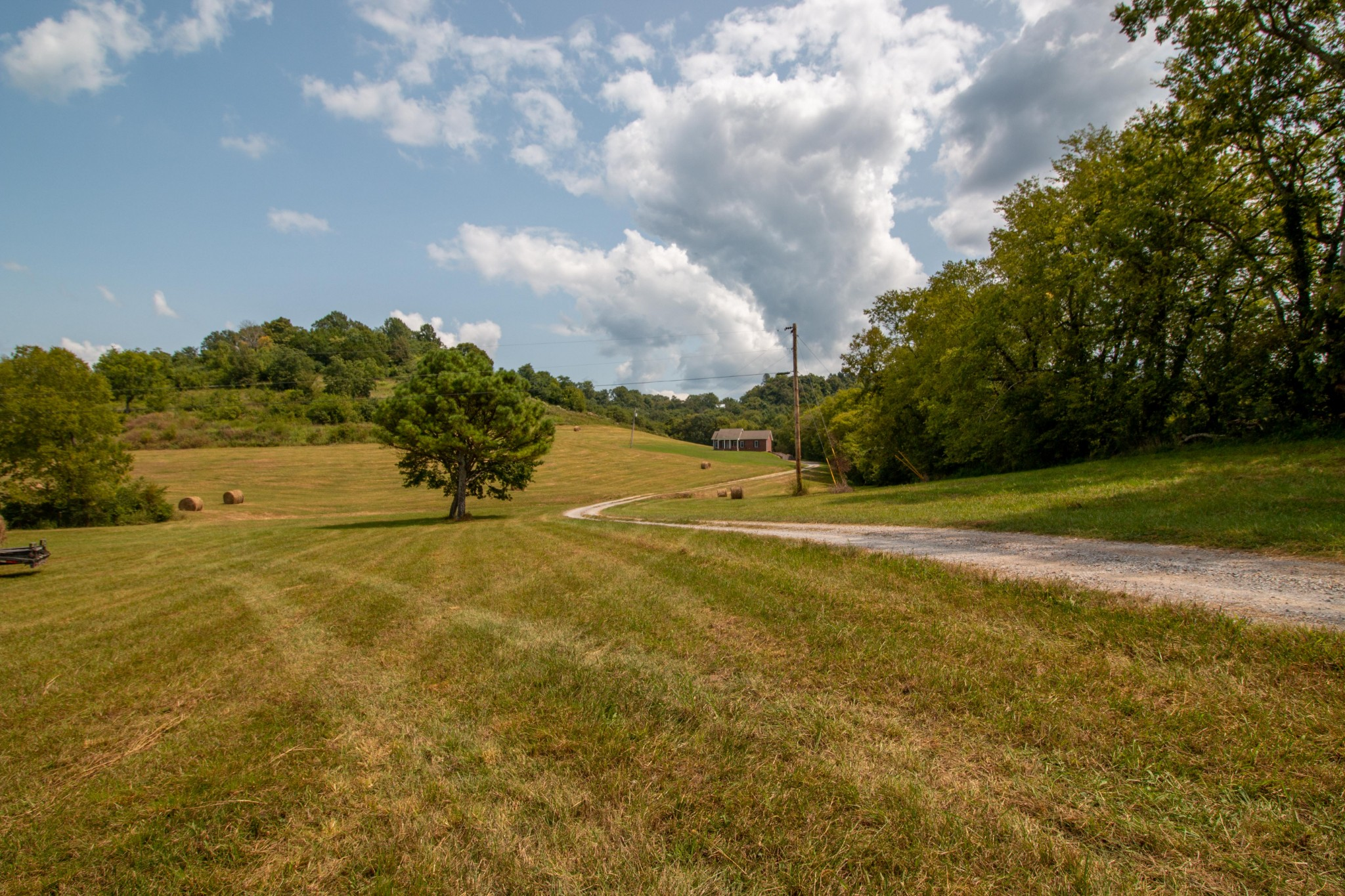 1735 Hatchett Hollow Rd Property Photo - Cornersville, TN real estate listing