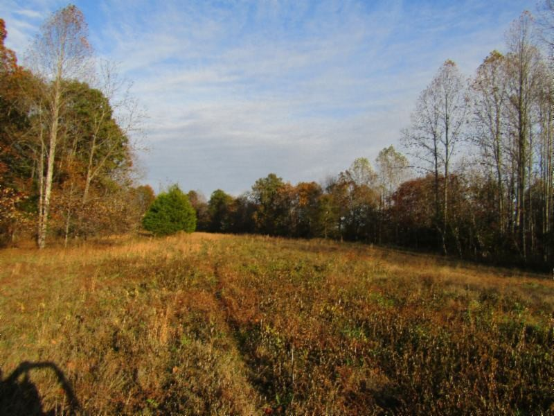 98 Highway 135 Property Photo - Red Boiling Springs, TN real estate listing