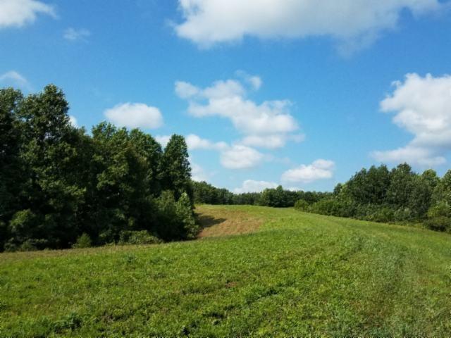 131 Highway 135 Property Photo - Red Boiling Springs, TN real estate listing
