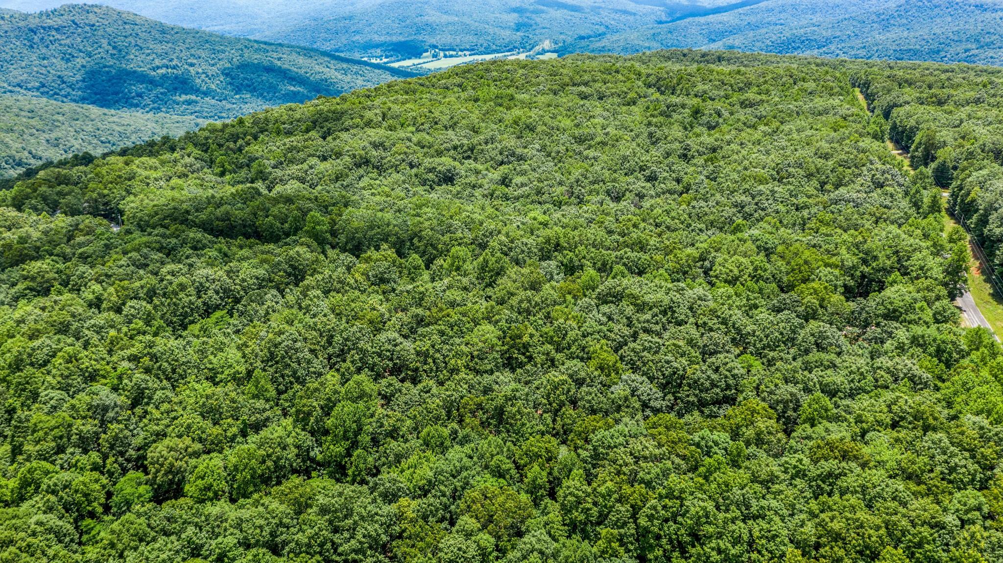 0 Old Sewanee RD Property Photo - Sewanee, TN real estate listing