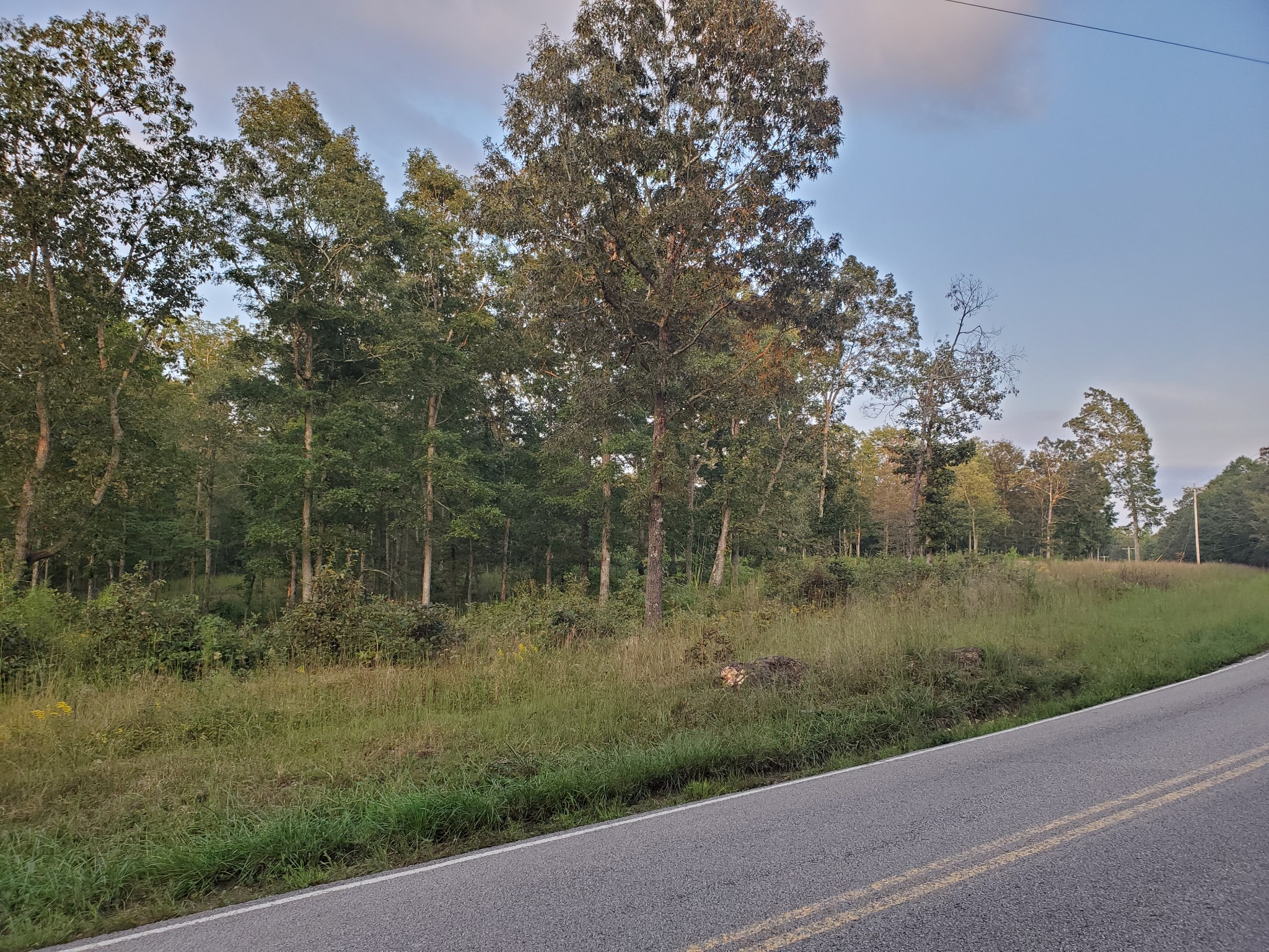 2511 Brodies Landing Rd Property Photo - Parsons, TN real estate listing
