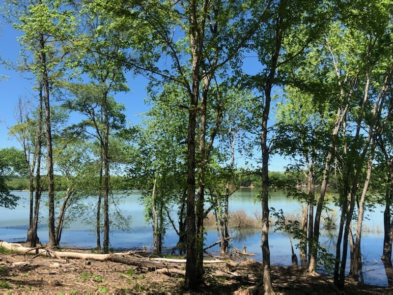 1248 Lower Roans Creek Road Property Photo - Linden, TN real estate listing