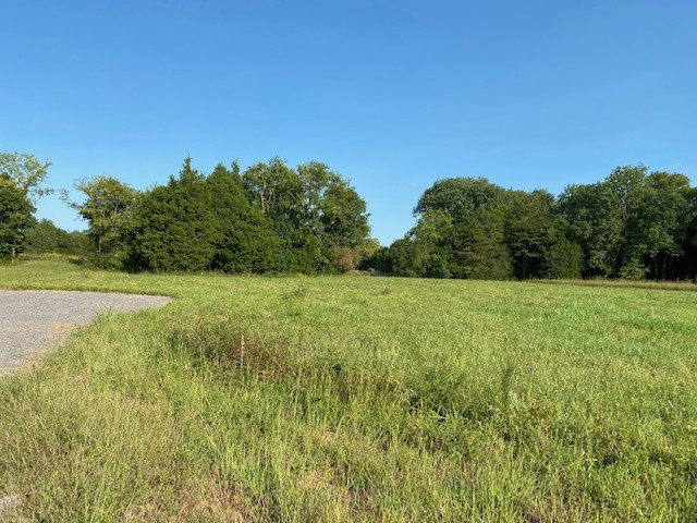 9526 Valley View Rd Property Photo - Lascassas, TN real estate listing