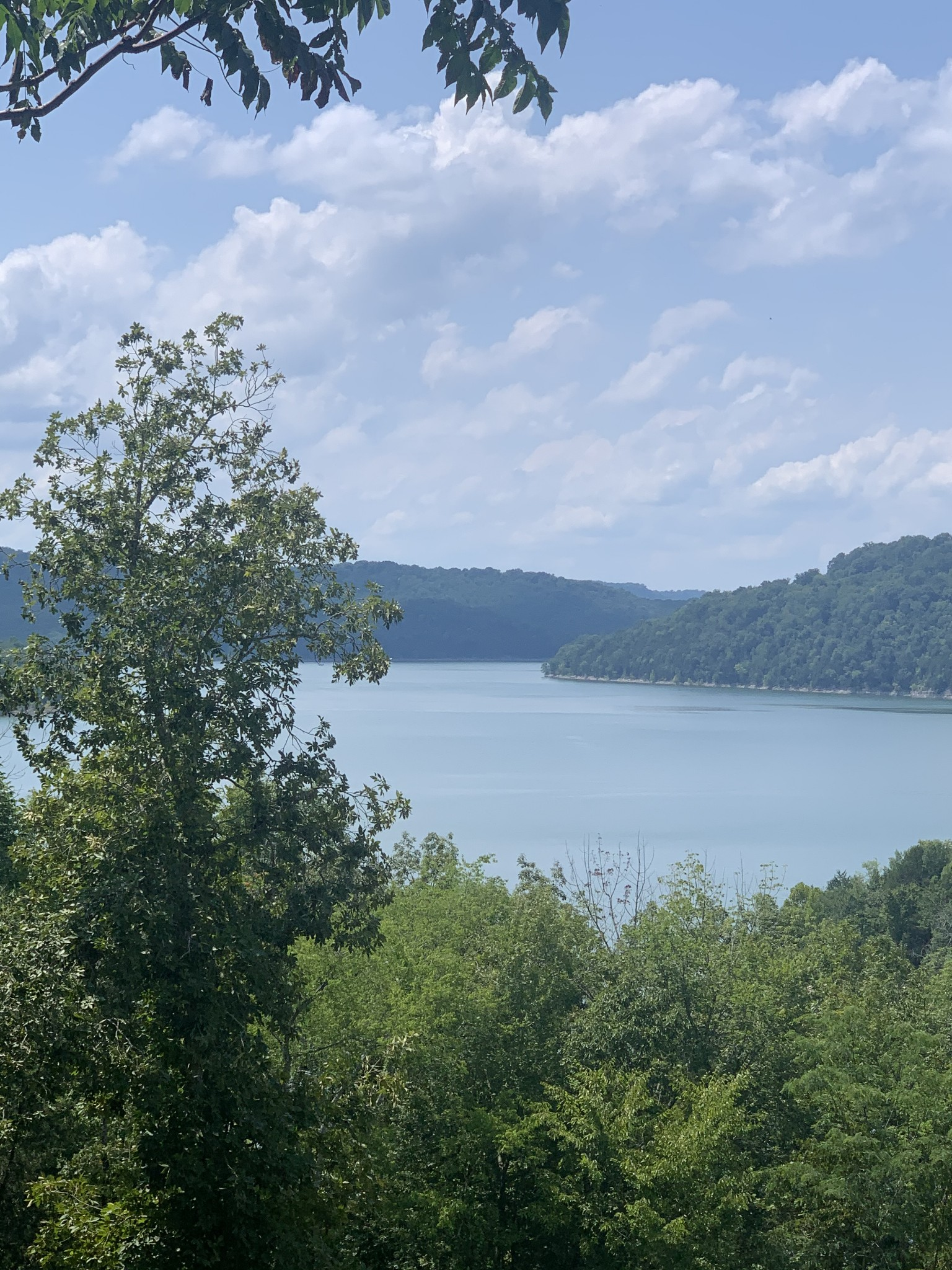 0 Harbor Pointe Dr. Property Photo - Silver Point, TN real estate listing