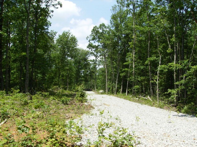 27 .1 AC West View Road Property Photo - Spencer, TN real estate listing