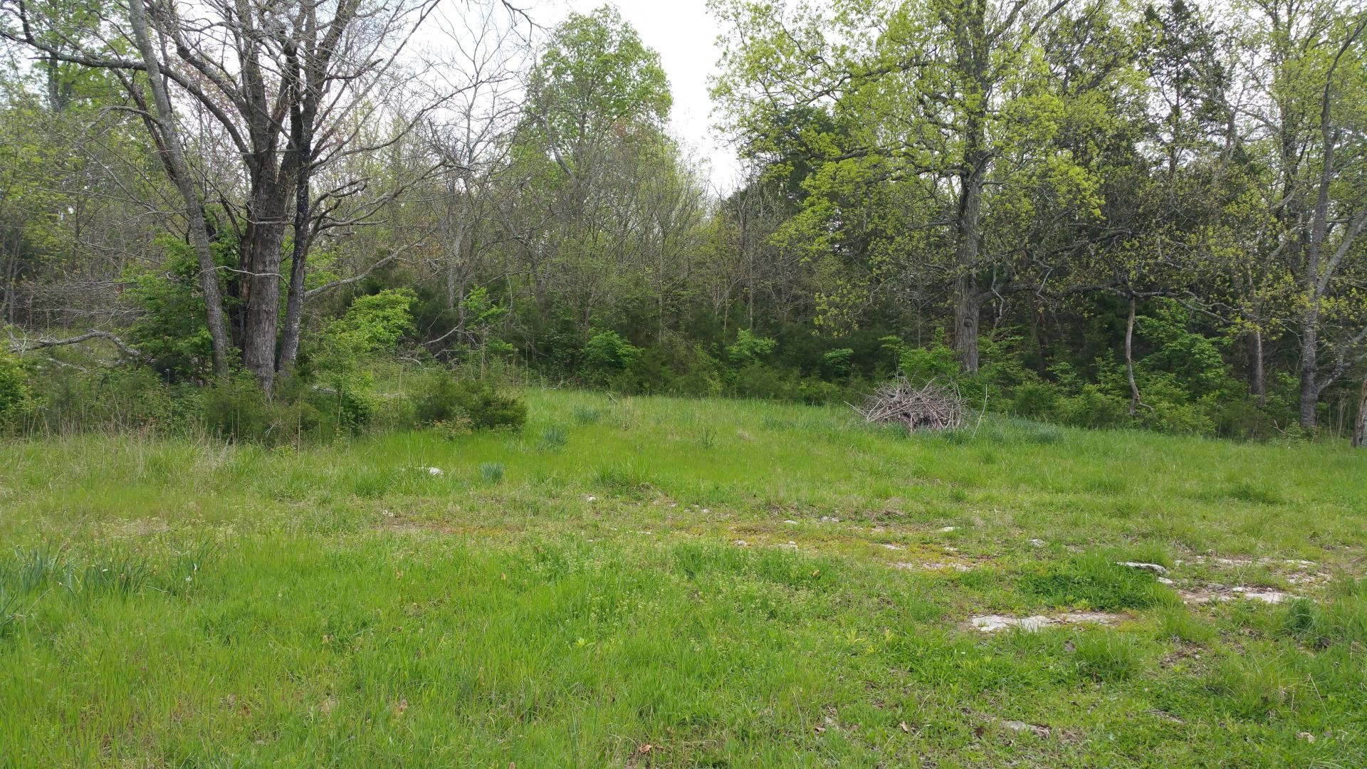 1 Cheatham Springs Rd Property Photo - Eagleville, TN real estate listing