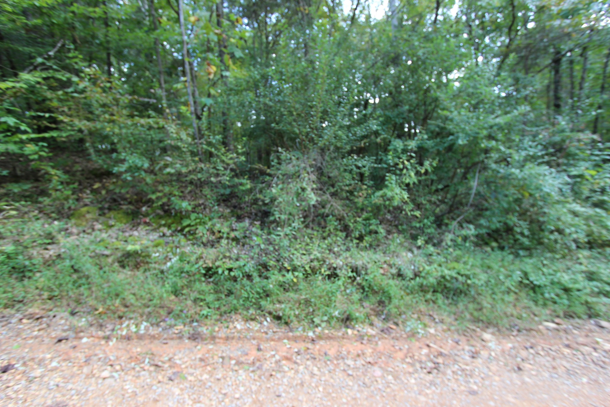 1 Apollo Drive Property Photo - Bumpus Mills, TN real estate listing