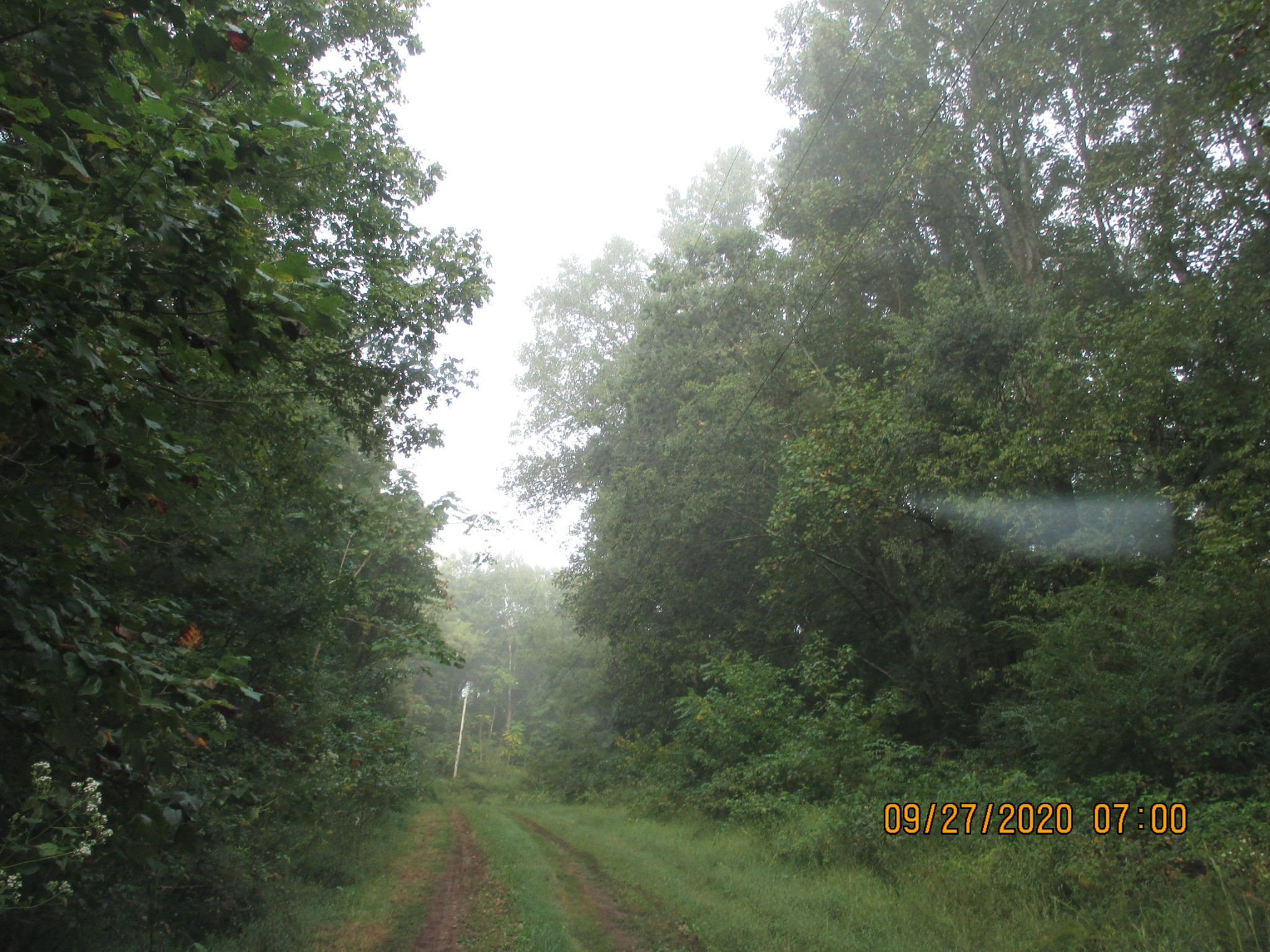 42.3 Ac Woodspondelect Real Estate Listings Main Image