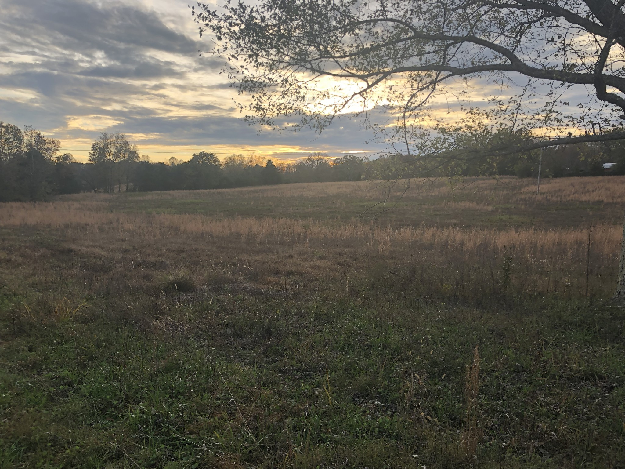 0 Buffalo Valley Rd Property Photo - Cookeville, TN real estate listing