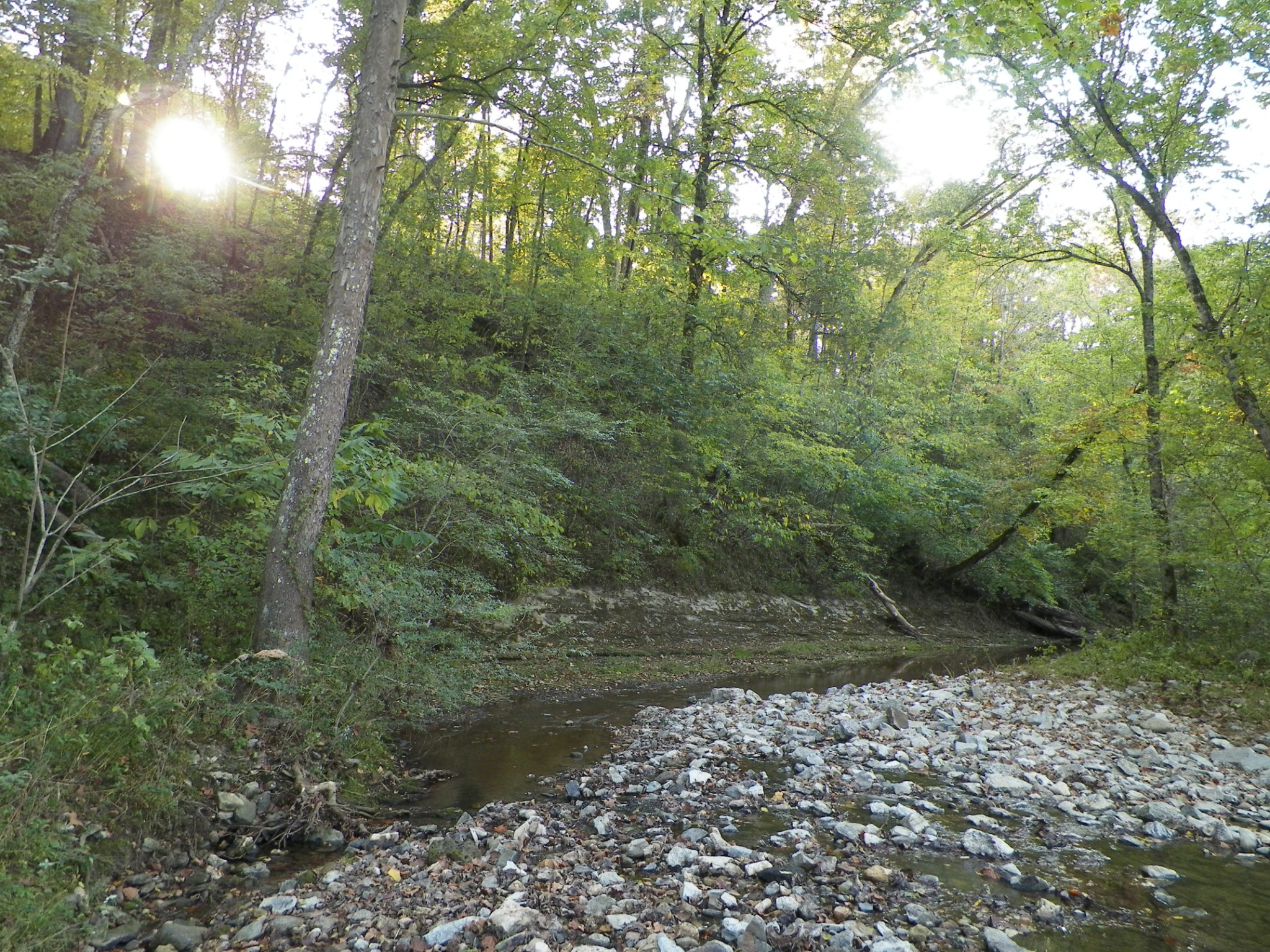280 Wolf Hill Rd Property Photo - Bethpage, TN real estate listing