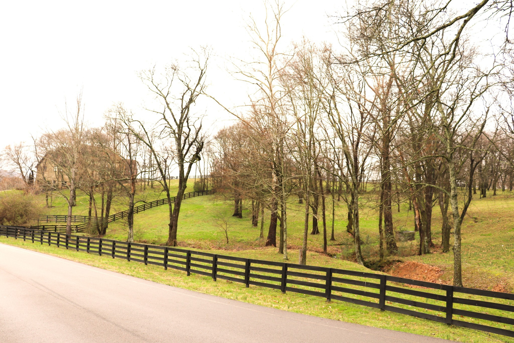 7500 Redtail Hawk Ct Property Photo - Arrington, TN real estate listing