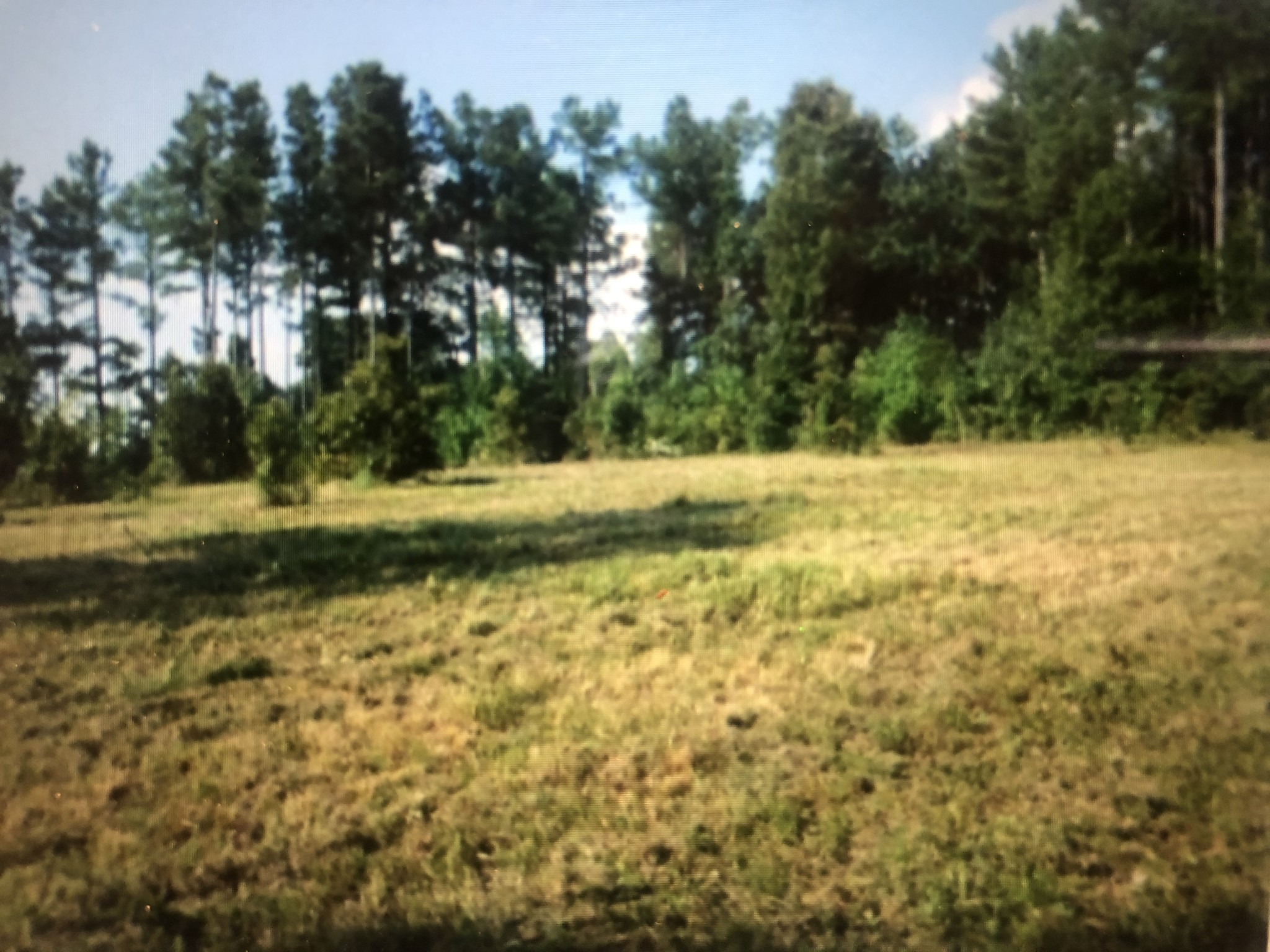 0 Poplar Springs Rd Property Photo - Indian Mound, TN real estate listing