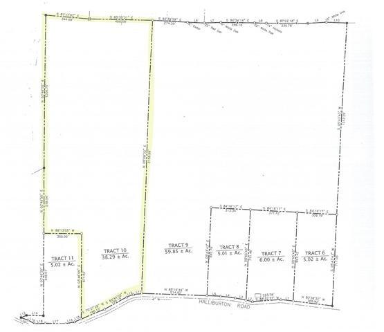 0 Halliburton Road #10 Property Photo - Vanleer, TN real estate listing