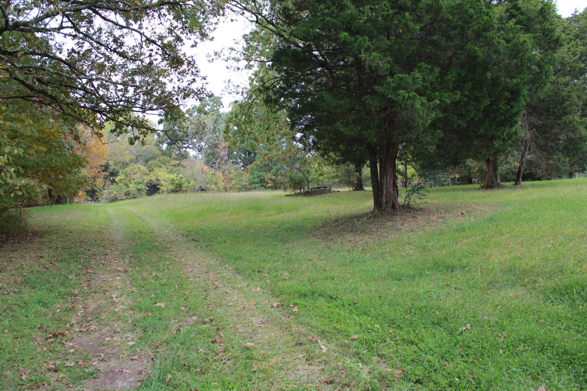 3976 Poplar Springs Rd Property Photo - Indian Mound, TN real estate listing