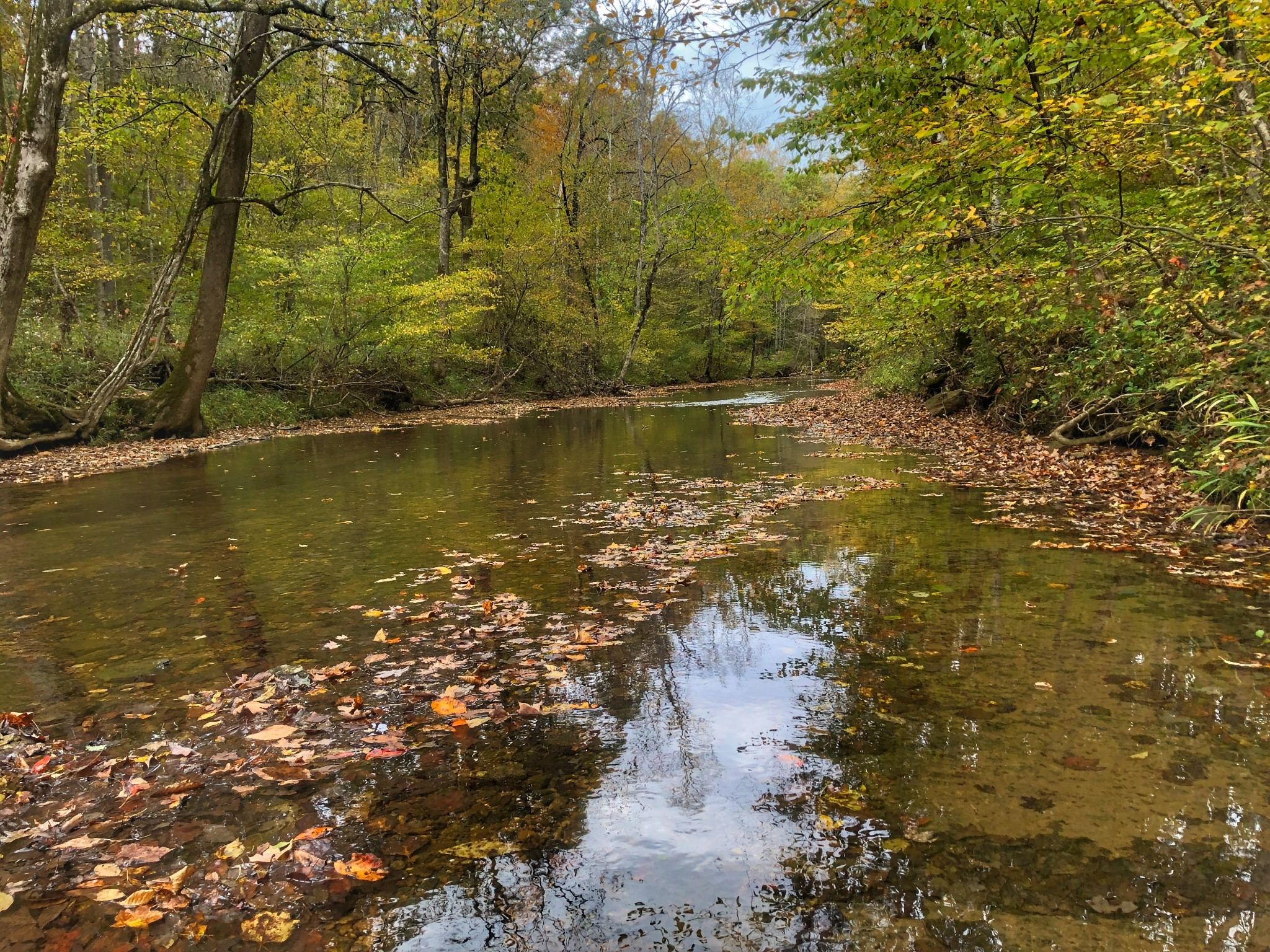0 Johnny Hall Road Property Photo - Burns, TN real estate listing